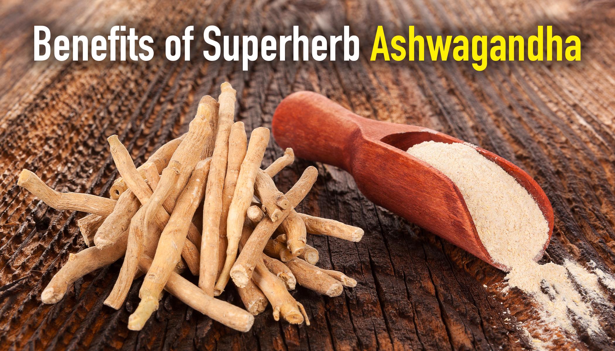 Ashwagandha: The Ancient Superherb That Lowers Cholesterol and Kills Tumor Cells