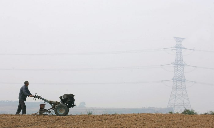 A farmer seeds winter wheats with a walking tractor in a field Oct. 5, 2006 in the outskirts of Yanshi of Henan Province, China. (China Photos/Getty Images)
