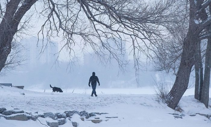 A man walks a dog in a snow covered park in Kingston, Ontario, on Jan. 30, 2019. (Lars Hagberg/AFP/Getty Images)
