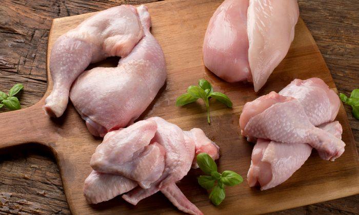 Chicken.(bitt24/Shutterstock)