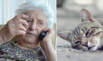 Elderly Lady Distraught Over Cat's Death Calls 911, So Kind Cop Buys a Shovel to Help Her