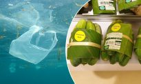 Thai Supermarket Experiments With Banana Leaves to Replace Plastic Packaging
