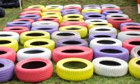 Brazilian Artist Turns Old Tires Found on the Streets into Cute, Eco-Friendly Pet Beds