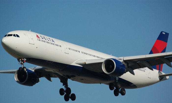 A picture of the Delta Airlines. (Pixabay)