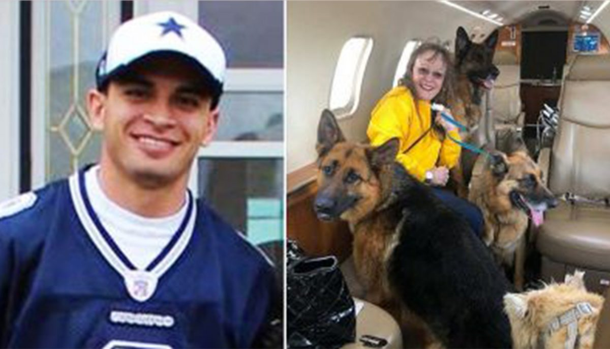 Marine couldn't fly dogs to his next base, so a super-rich stranger offers up her jet