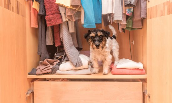 Clothes-Obsessed Dog Gets Adorable Closet Custom-Made by Grandpa