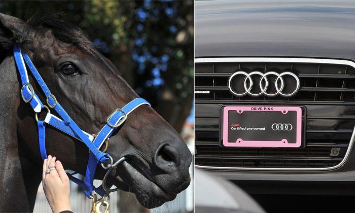 (L) A racehorse. (Paul Crock/AFP/Getty Images) | (R) An Audi car. (Scott Olson/Getty Images)