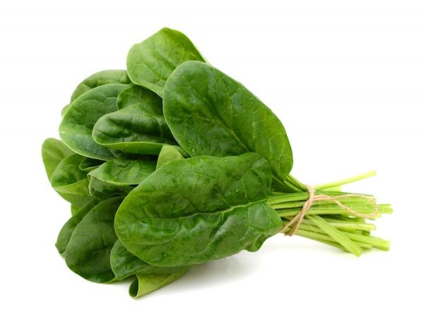 Fresh Spinach is rich in Iron