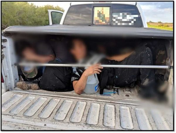 illegal aliens in pickup truck
