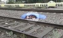 Loyal Dog Curls Up Next to Dead Owner Refusing to Leave After He Was Hit by Train