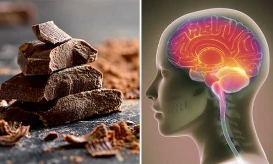 Eating Chocolate Is Good for Your Brain and Other Body Organs, Scientists Say