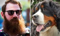 Men With Beards Have 'Significantly' More Bacteria Than Dogs, Study Finds