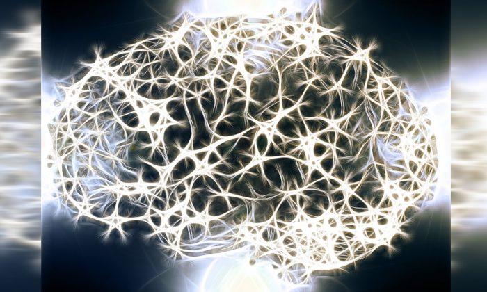 Graphical illustration of neuronic linkages inside a brain. (Geralt/Pixabay)