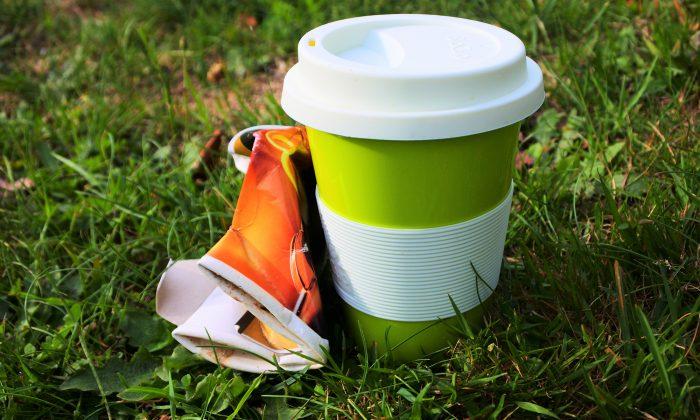 Cups With Can TreesPlantable Seeds Trash Coffee Embedded Into Turn PlXwOZuTki