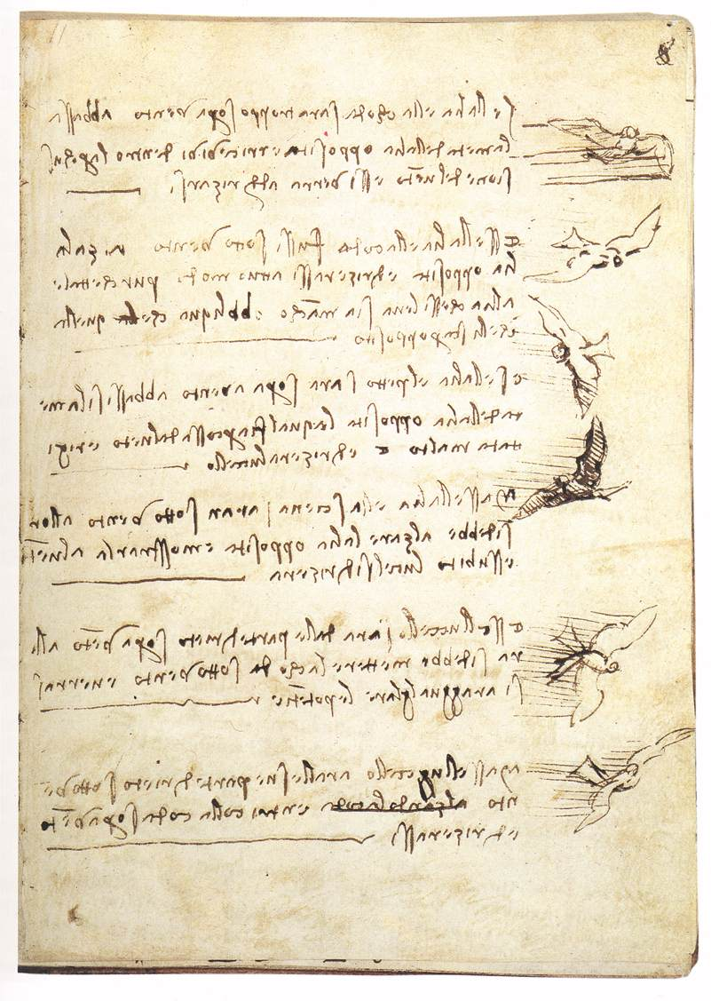codex-on-the-flight-of-birds