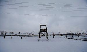 Auschwitz Memorial Responds After Journalists Defend Ocasio-Cortez's Concentration Camps Comments