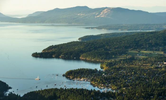 An aerial view of Salt Spring Island. (Destination BC/Reuben Krabbe)