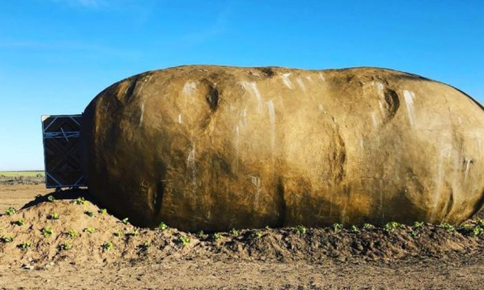 The giant, six-ton potato home (Idaho Potato Commission / Famous Idaho Potatoes)