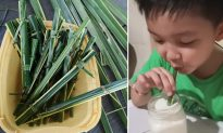 Cafe Introduces 'Green' Straws — What They're Made From Is Impressing Customers