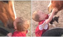 Babies Give Goodnight Kisses to Their Animal Best Friends