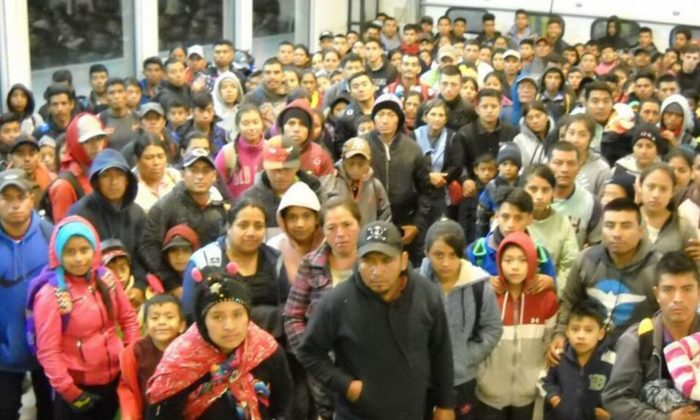 U.S. Border Patrol said agents detained the largest group ever intercepted at one time, consisting of 424 individuals, in New Mexico, on April 30. Pictured is a second, smaller group of 230 illegal immigrants apprehended on April 30 in Antelope Wells. (U.S. Border Patrol)