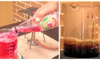 Teacher Reveals Just How Much Sugar Is in One Bottle of Soda — the Results Will Scare You