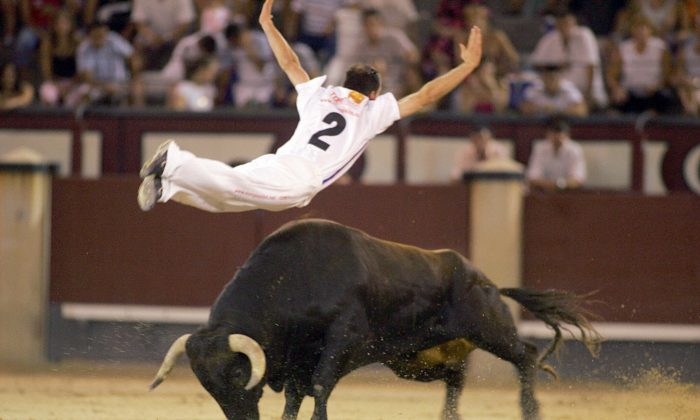 "A Spanish ""recortador"" jumps over a bull during a show in Madrid on July 24, 2005. (Samuel Aranda/AFP/Getty Images)"