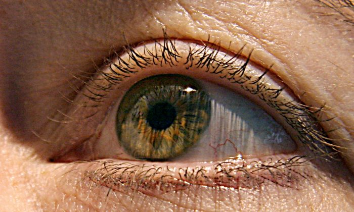 File photo showing a close-up of a woman's eye. (Karen Bleier/AFP/Getty Images)