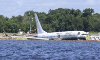 Missing Pets Involved in Jacksonville Plane Crash Found, Says US Navy