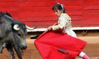 Female Bullfighter Gored in the Face in Mexico Arena