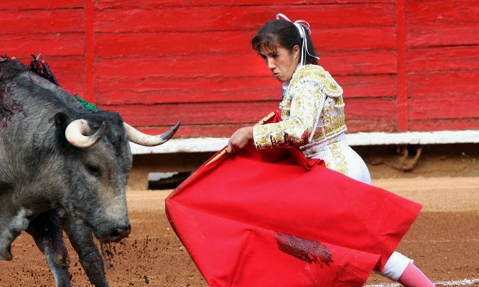 Mexican bullfighter Hilda Tenorio performs at Plaza Mexico bullring in Mexico City on Feb 28, 2010. (STR/AFP/Getty Images)