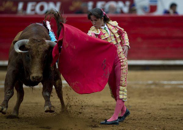 Mexican matadora Hilda Tenorio
