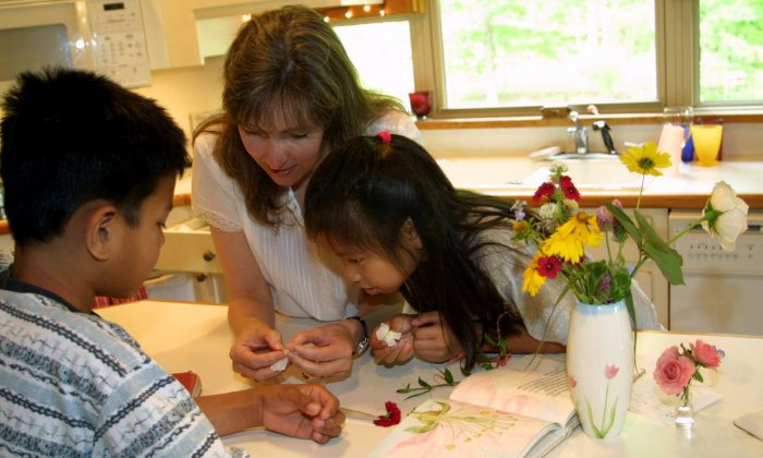 Homeschooling allows more creativity in the way the curriculum is delivered. (Fotolia)