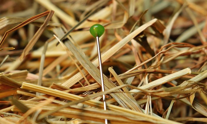 File photo of a pin on the ground. (Pixabay/CC0)