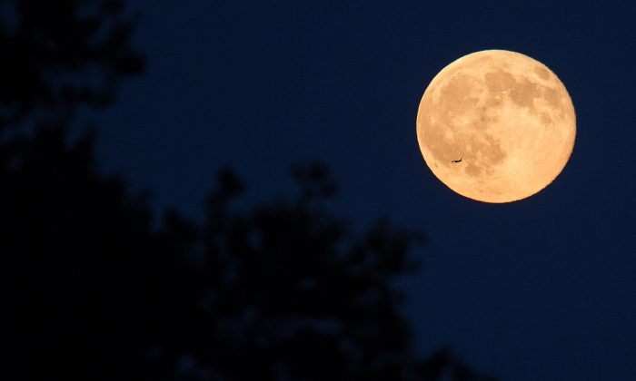 A plane flies in front of a full moon in Arlington, Va., on July 31, 2015. (NASA/Joel Kowsky)