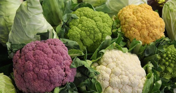 Different kinds of cauliflower