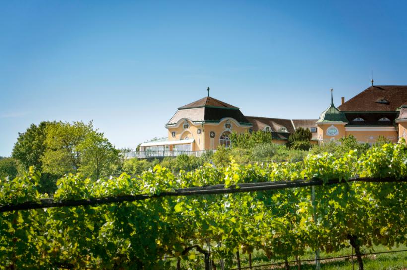 winery vienna