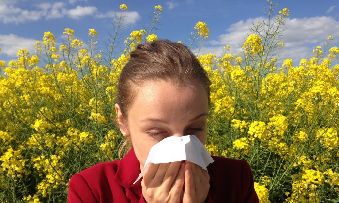 When allergies strike, what you eat and drink can make a big difference in how you feel. (cenczi/Pixabay)