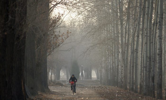 A bicyclist in China. (Frederic J. Brown/AFP/Getty Images)