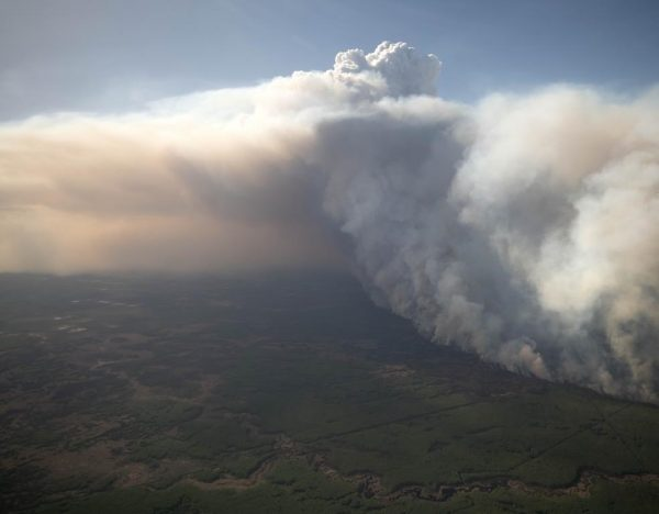 A fire burns near High Level, AB. on May 21, 2019 in this handout photo from the Alberta Government. (HO, Chris Schwarz, Government of Alberta/The Canadian Press)
