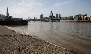 World's Rivers Contaminated With 'Dangerous Levels of Antibiotics,' Major Study Finds