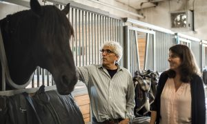 Horses Helping Veterans With PTSD