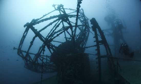Sunken Ship in Florida Once Turned Into Gallery