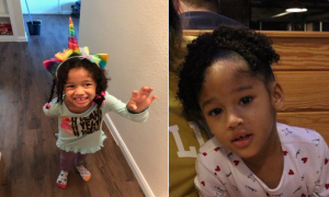 Houston Will Turn Pink on Sunday for Maleah Davis, 4, Whose Body Was Found