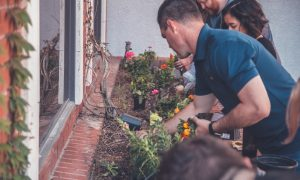 The Benefits of Gardening Therapy in Addiction Recovery