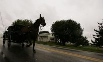 Two Children Die After Truck Hits Amish Horse-Drawn Carriage