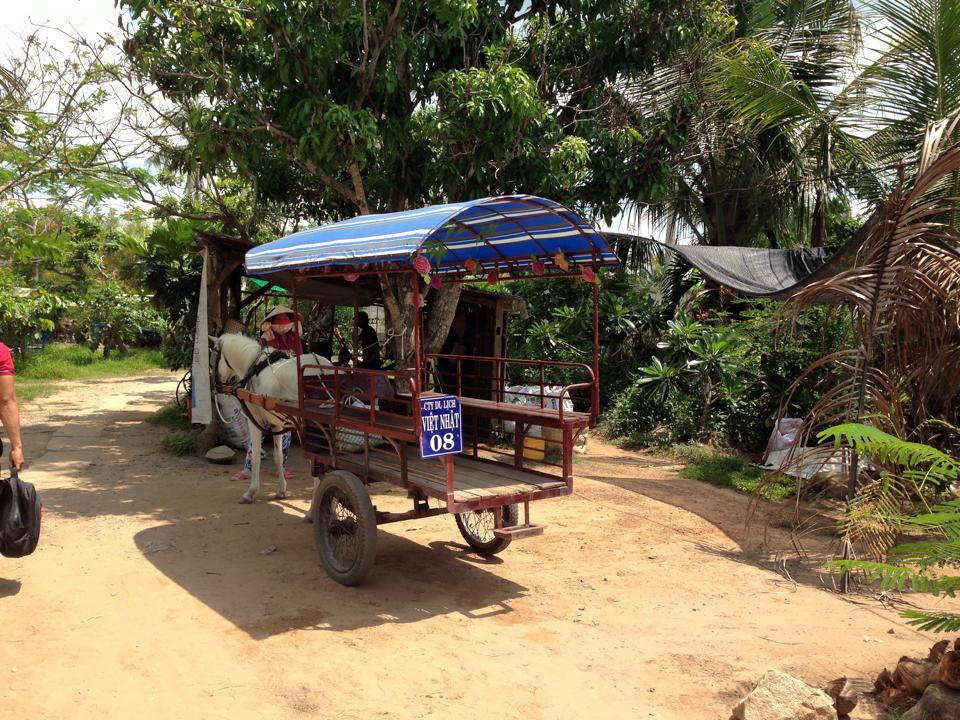 horse ride mekong delta