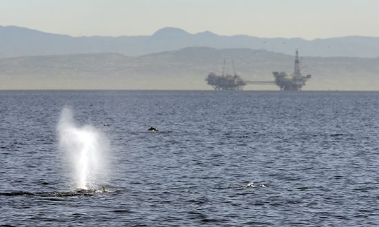 Supreme Court Rules State Law Does Not Apply to Outer Continental Shelf