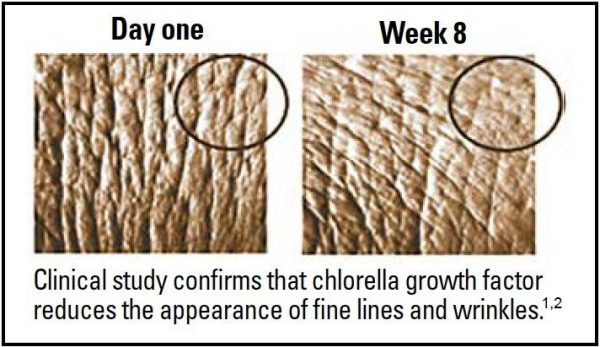 A clinical skin study