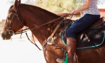 Girl Enters on Her Stunning Horse, Crowd Gasps When She Removes Her Cape